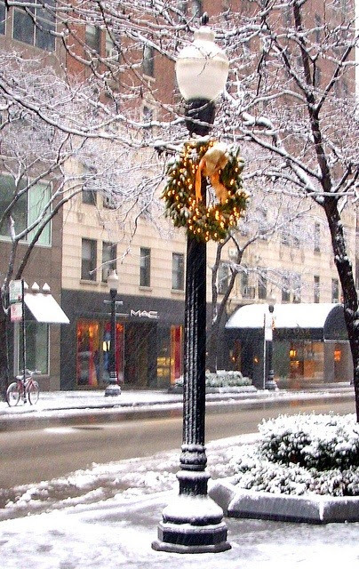 comtesse-du-chocolat:  Chicago in December (via pinterest)