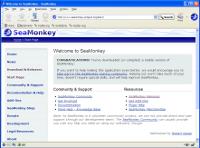 browser startup