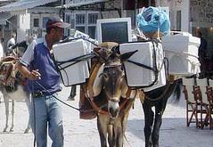 Transporte de computadores em lombo de burro