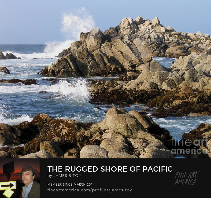 The Rugged Shore of Pacific Grove