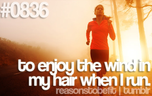 Runner Things 494 Reasons To Be Fit 0836 To Enjoy The Wind In My