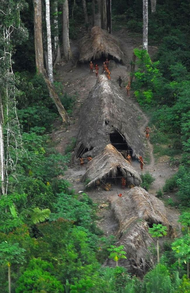 'Uncontacted Indians' of the Envira, who have never before had any contact with the outsi