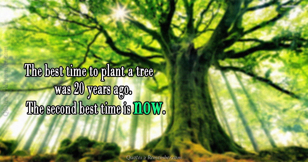 The Best Time To Plant Quotes 2 Remember