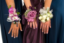 68 best Corsages images on Pinterest | Wrist corsage, Prom flowers ...