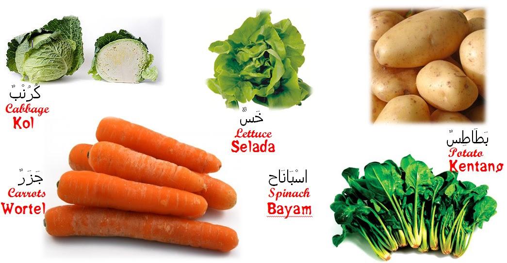 Nama Nama Sayur Sayuran Dan Bahasa  nama buah dan nama sayuran dalam bahasa inggris beserta