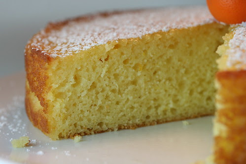 Calamansi & Meyer Lemon Yogurt Cake
