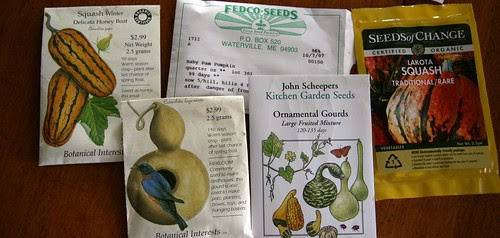seeds from dave