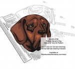 Pachon Navarro Dog Intarsia or Yard Art Woodworking Pattern - fee plans from WoodworkersWorkshop® Online Store - Pachon Navarro Dog,dogs,pets,animals,yard art,painting wood crafts,scrollsawing patterns,drawings,plywood,plywoodworking plans,woodworkers projects,workshop blueprints
