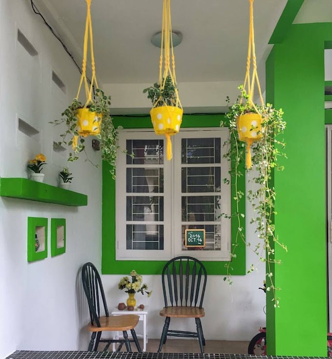 Warna Cat Tembok Hijau Ruang Tamu | Ide Rumah Minimalis