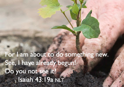 Image result for God is doing something new