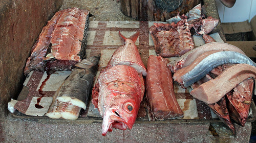 Fish Market by TonyKRO