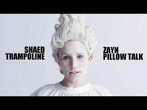 SHAED x Zayn - Trampoline Talk