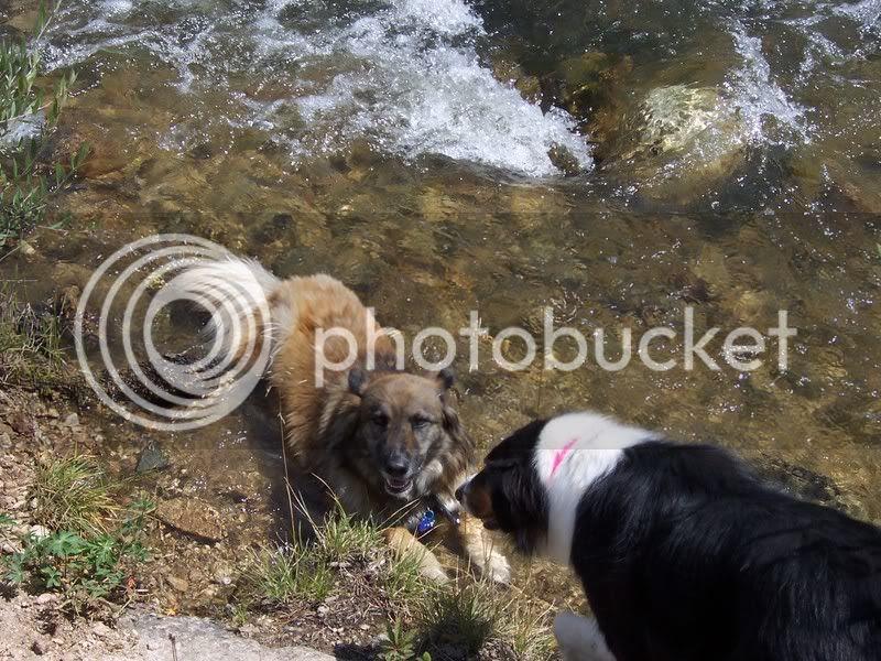Josie soaks while Willow checks