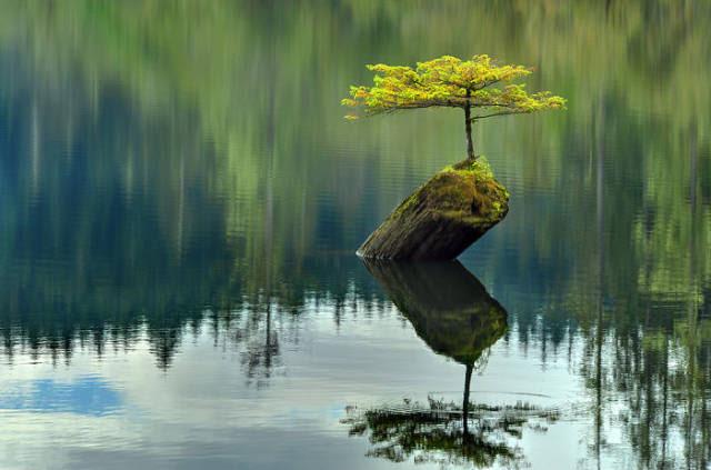 Ένα σημάδι ότι η φύση σας είναι ισχυρότερη