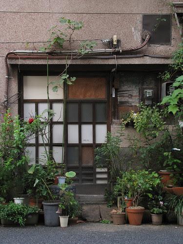Tokyo Plant Pots 192 東京植木鉢 by tsuyatsuya.