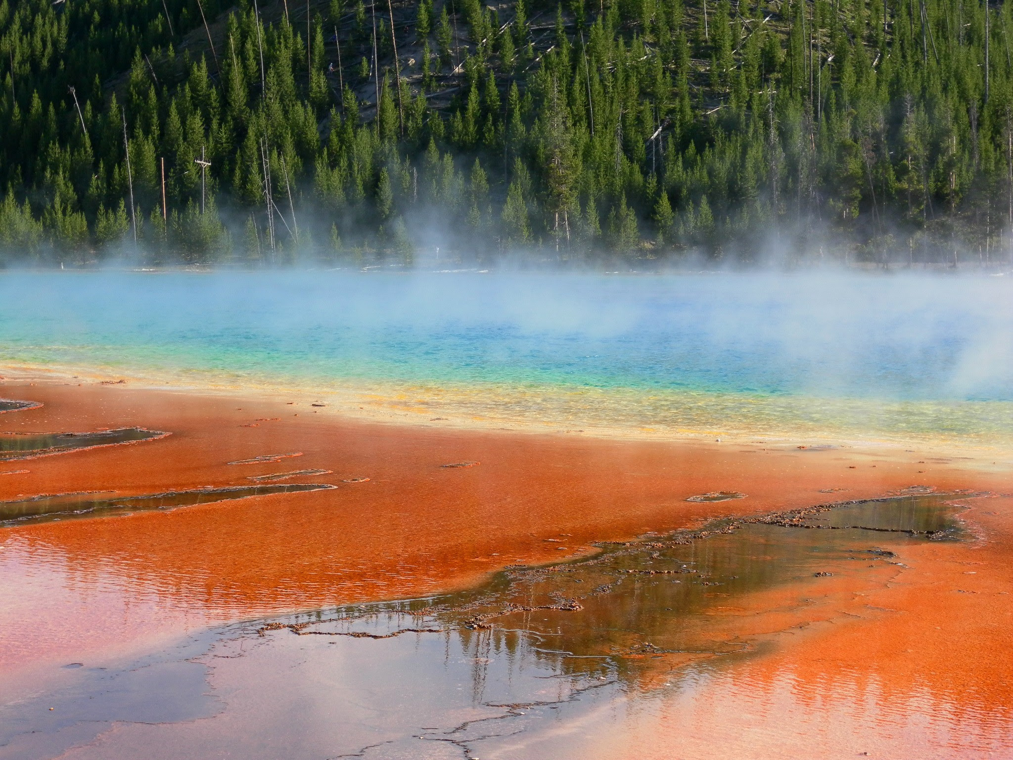 Yellowstone tours from Denver  Yellowstone Bus Tours and