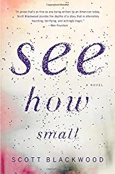 See How Small, by Scott Blackwood