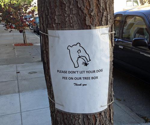 don't let dog pee.jpg