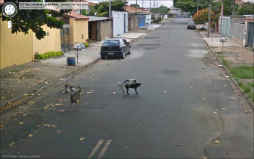 sexo flagras do Google Street View