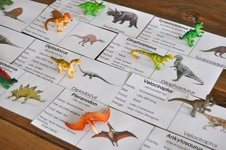Matching Dino Toob Cards