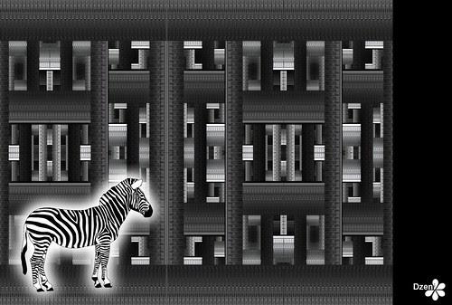 Zebra Maze