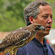 Man and hawk at event