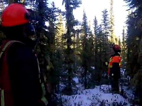 video que muestran los sonidos extraños que se oyen en Conklin, Alberta