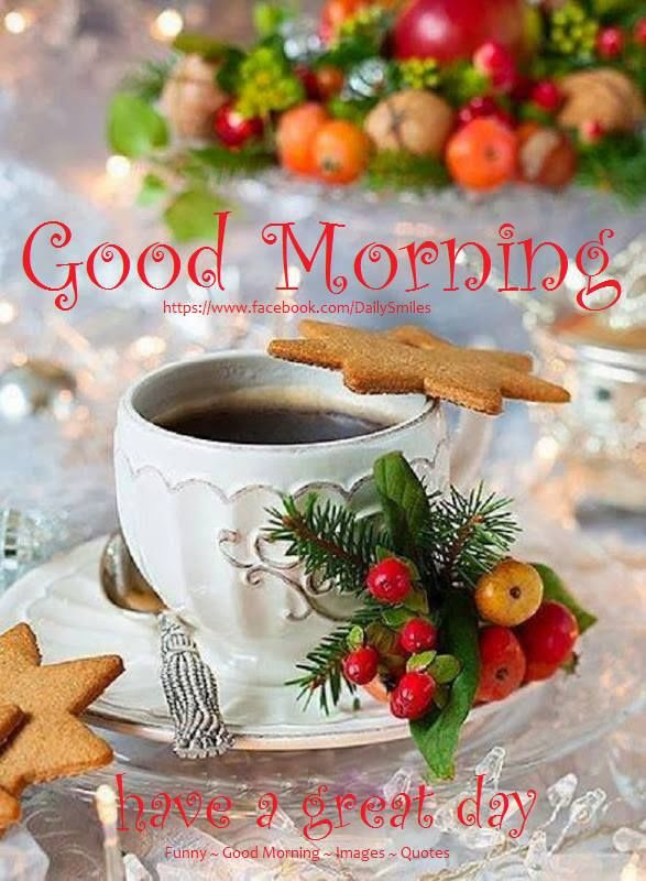 Christmas Good Morning Have A Great Day Quote Pictures Photos And