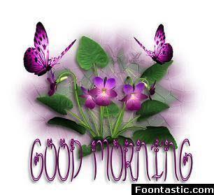 Good Morning Berni Butterflies Photo 9263236 Fanpop