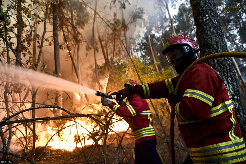 Os bombeiros abordam uma chama em Boa Aldeia, Viseu, Portugal.  Cerca de 3.000 bombeiros em todo o país estão lutando contra as chamas que dizimaram floresta palha seca e arbustos