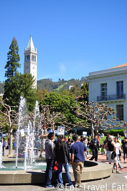 UC Berkeley, Berkeley, CA- Fountain, Sather Tower, Students