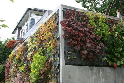 vertical garden corner