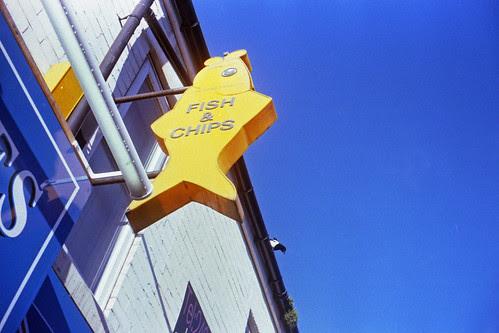 big yellow fish by pho-Tony