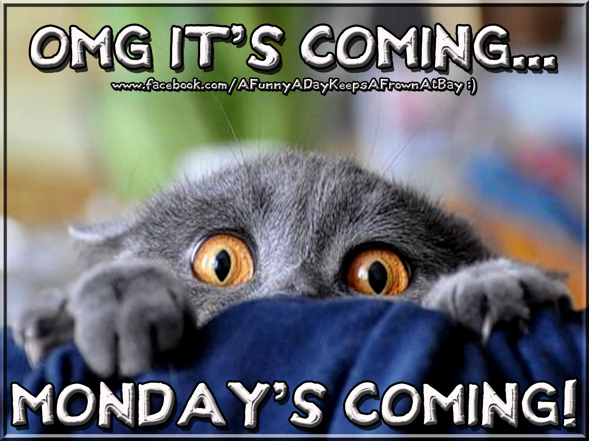 Omg Mondays Coming Pictures Photos And Images For Facebook Tumblr