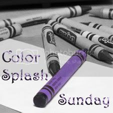 Color Splash Sunday: Castle