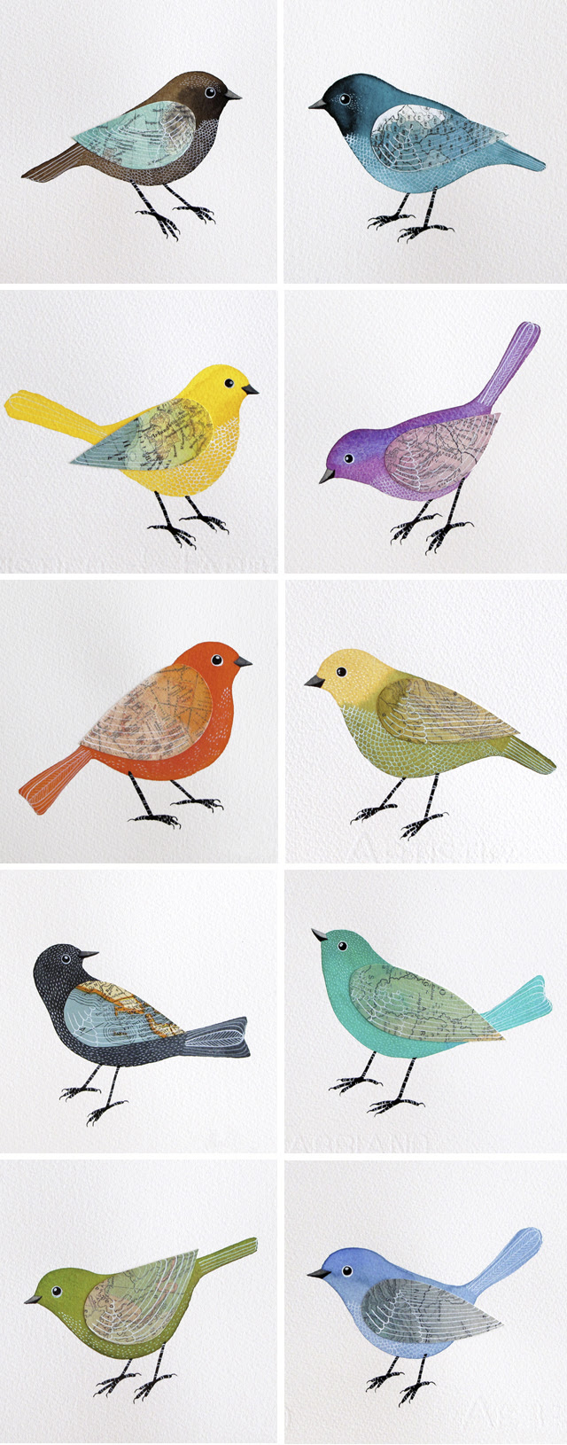 New Flock