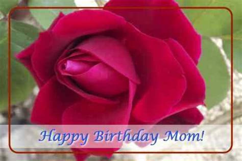 Happy Birthday Mom With Rose. Free For Mom & Dad eCards