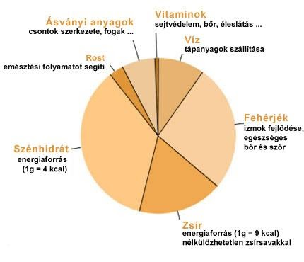 bioenergia és magas vérnyomás 2-es típusú cukorbetegség magas vérnyomása