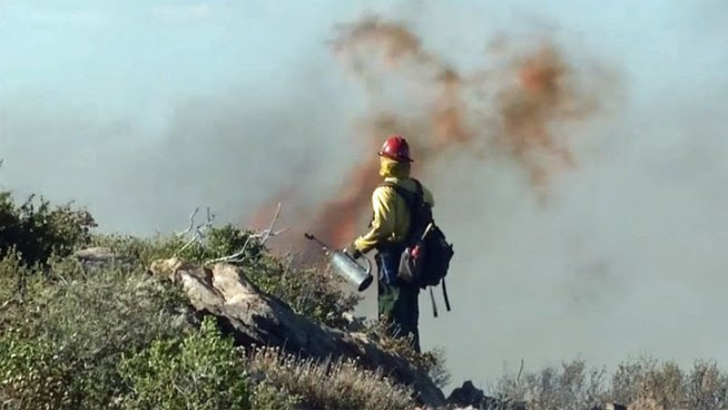 'Chariot Fire' Burns Near Julian
