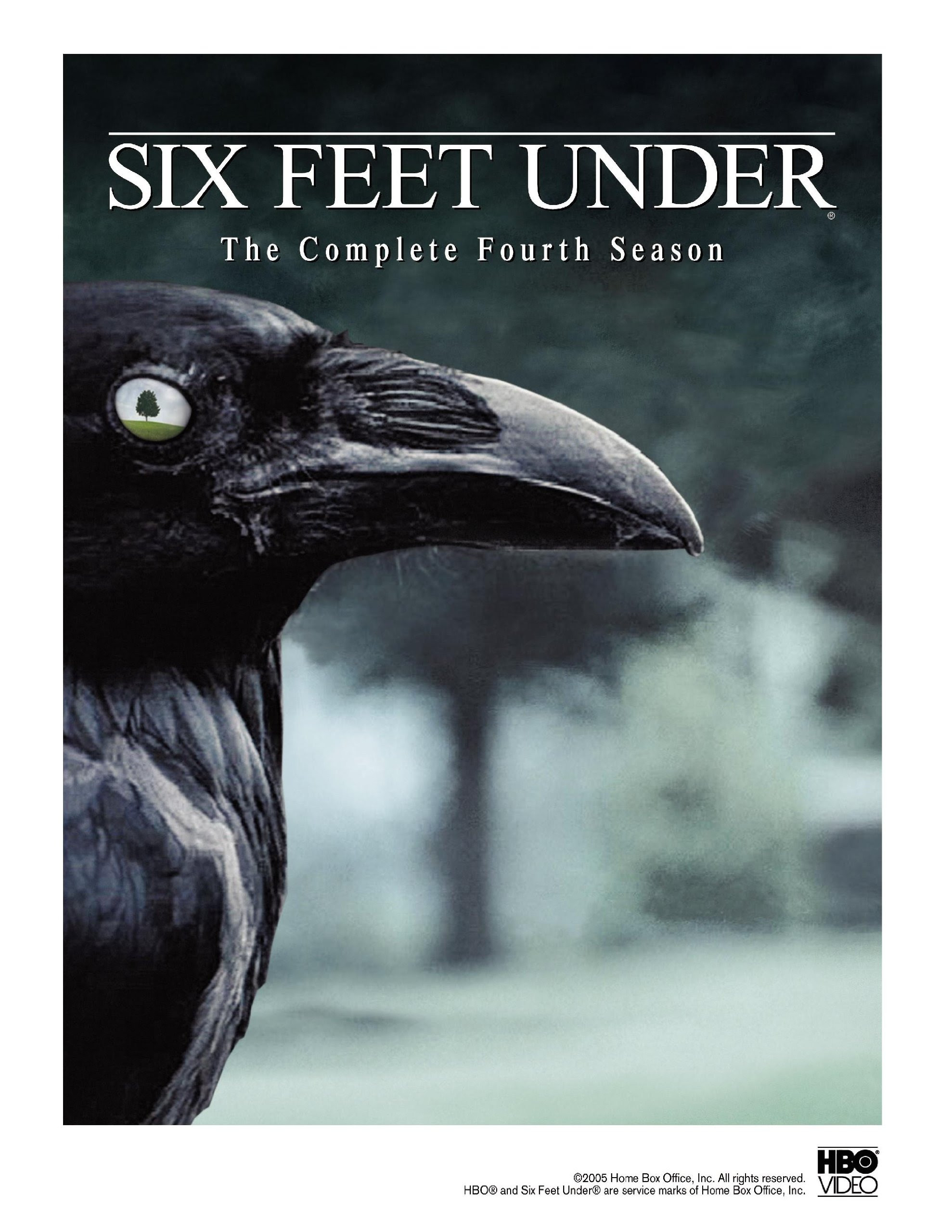 http://www.dvdsreleasedates.com/covers/six-feet-under-the-complete-fourth-season-dvd-cover-20.jpg