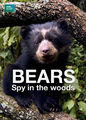 Bears: Spy in the Woods | filmes-netflix.blogspot.com