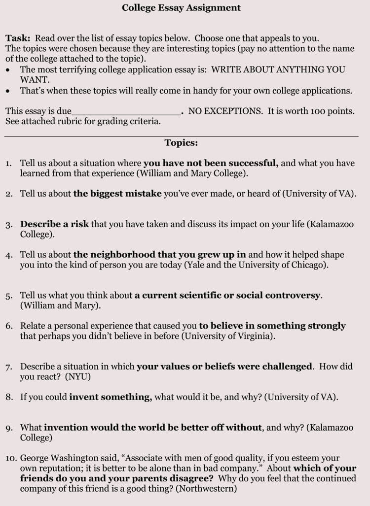 8 Samples Of College Application Essay Format And Writing