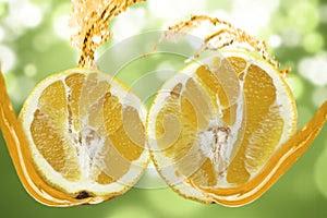 Oranges splash