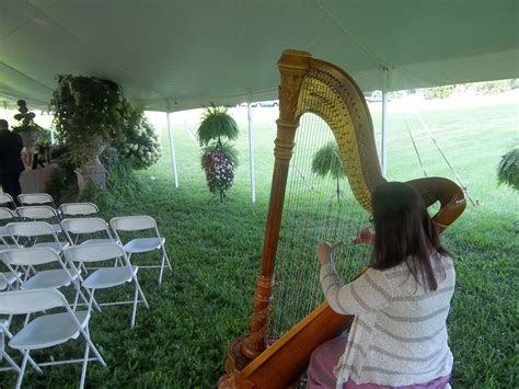 Southern Ohio Harpist ~ Wedding Ceremony Music in Jackson