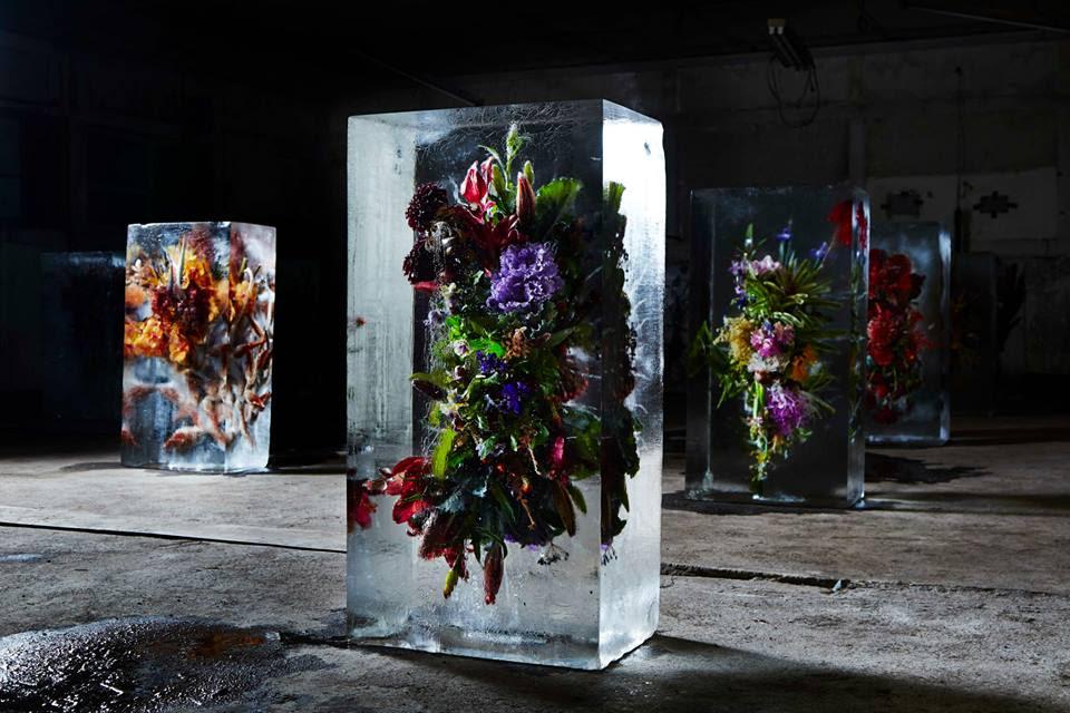 iced-flowers-makoto-azuma (1)