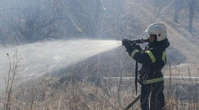 В Приморском крае площадь природных пожаров за сутки выросла в 10 раз
