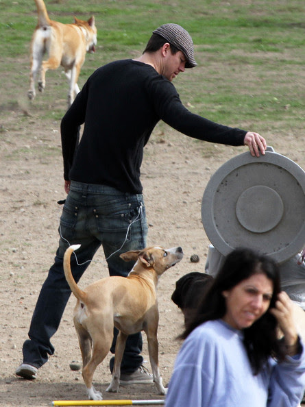 Actor Channing Tatum plays with his dog at a dog park on Mulholland Drive in Los Angeles. His dog got into a minor scuffle with another dog.