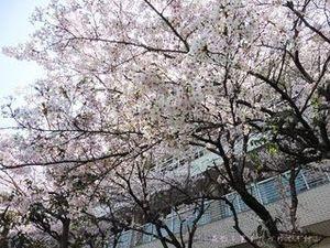 今池親水公園03.JPG