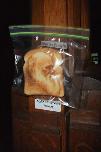 Darwin on Toast!