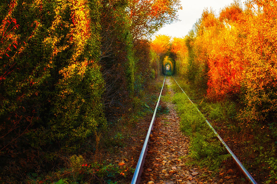 Romanian Tunnel Of Love